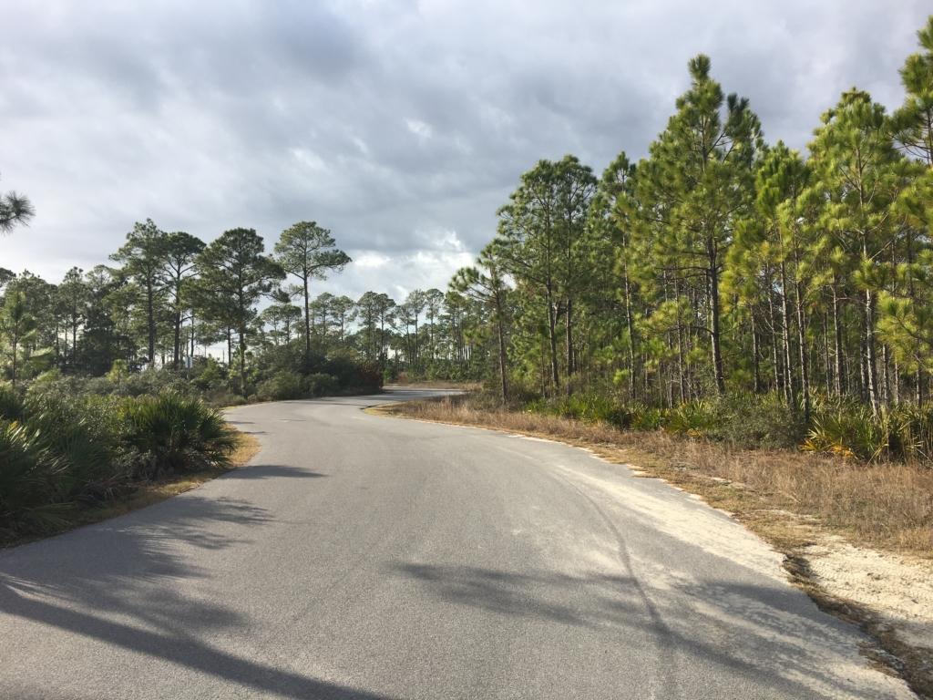 Campground road at Grayton Beach State Park.