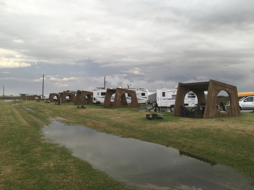 Back of campsites on beach side of Galveston Island State Park.