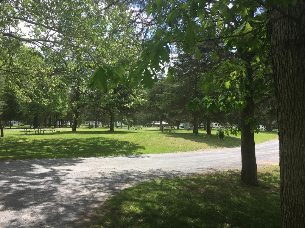 Campsites at Natural Chimneys Park
