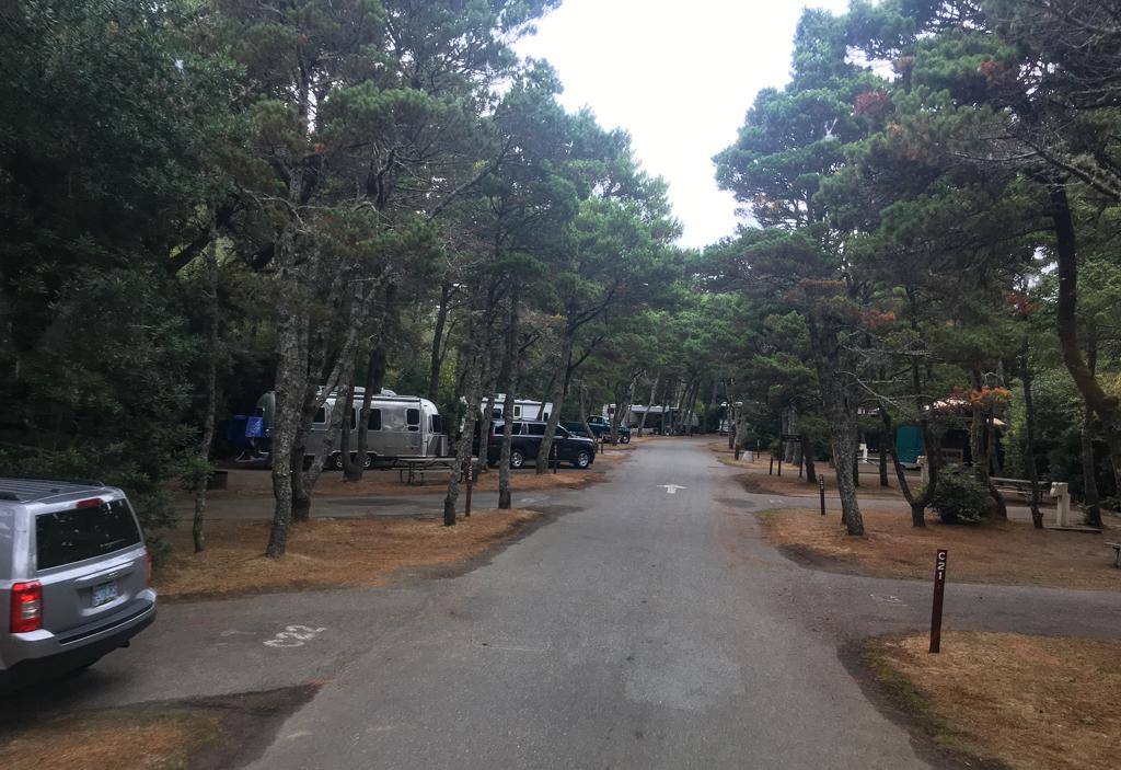 Bullards Beach State Park campground