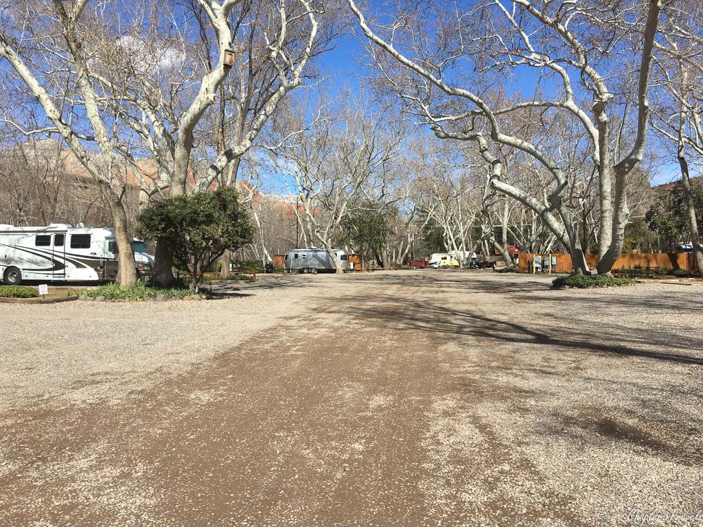 Oak and Cottonwood trees at Rancho Sedona RV Park in Sedona, Arizona