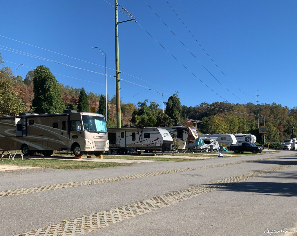 Campsites at Wilson's Riverfront RV Park